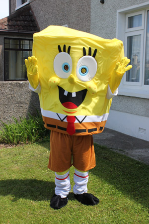 Sponge Bob for hire in Limerick